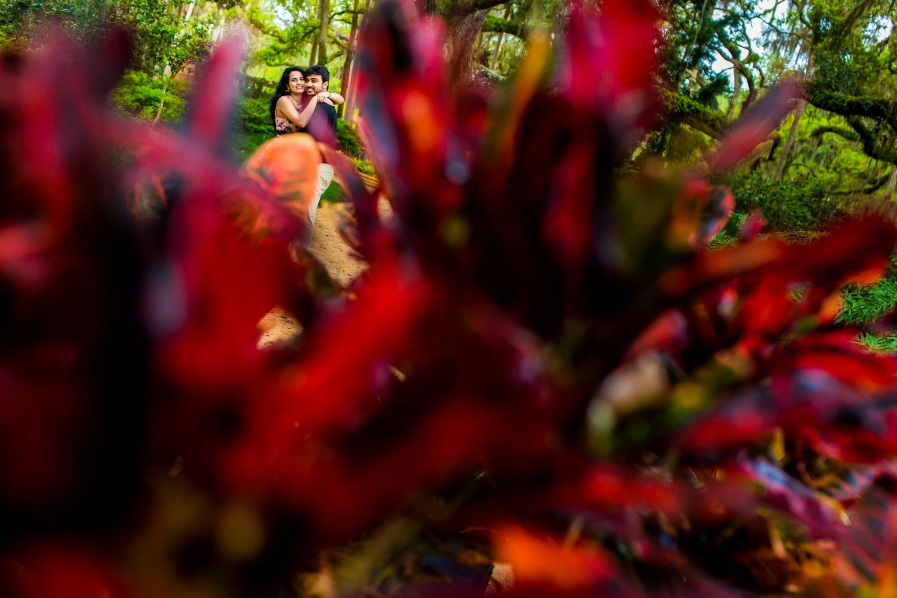 washington oaks state park engagement photography